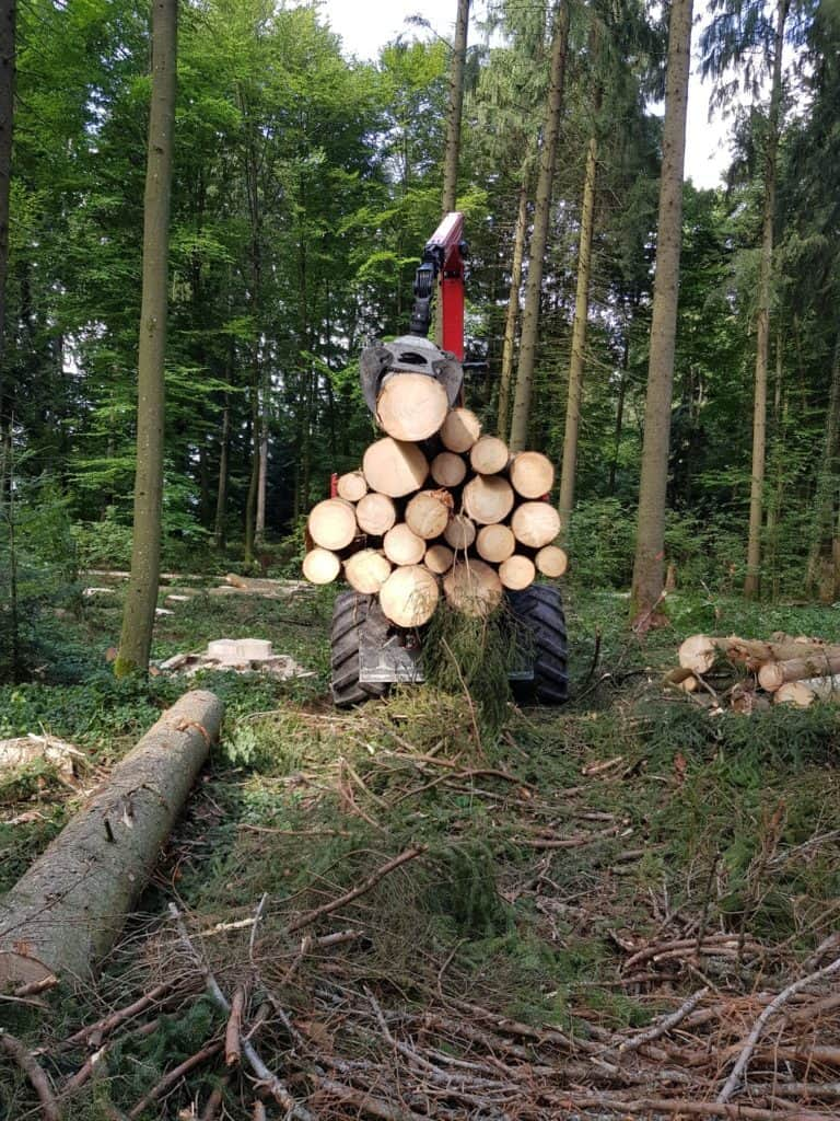 Wald mit Spezialmaschine