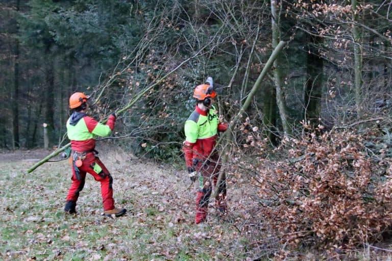 Mitarbeiter Forstbetrieb im Einsatz